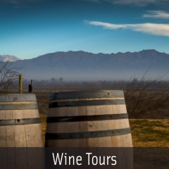Mendoza Wine Tours