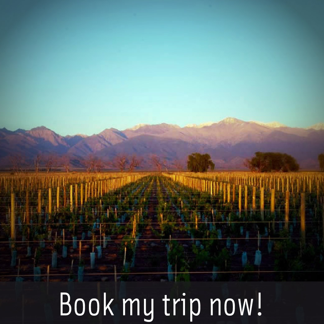 Book My Trip Now!